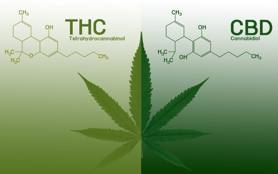 Why you Need THC in your CBD Oil