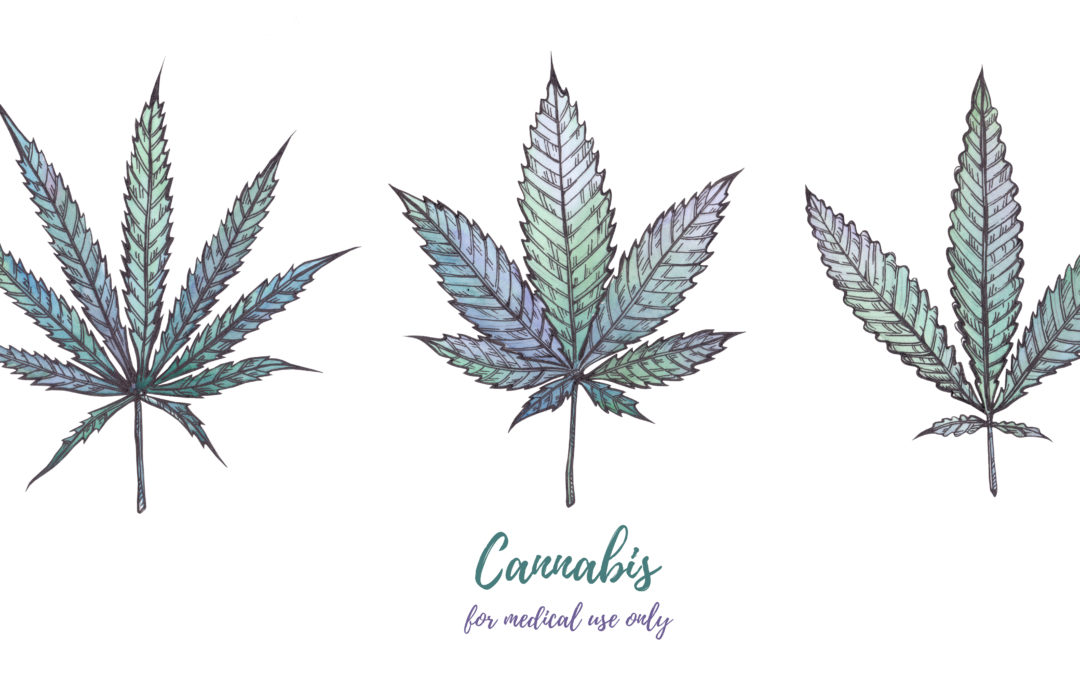 Cannabis Strains, Landraces and the Strain Story