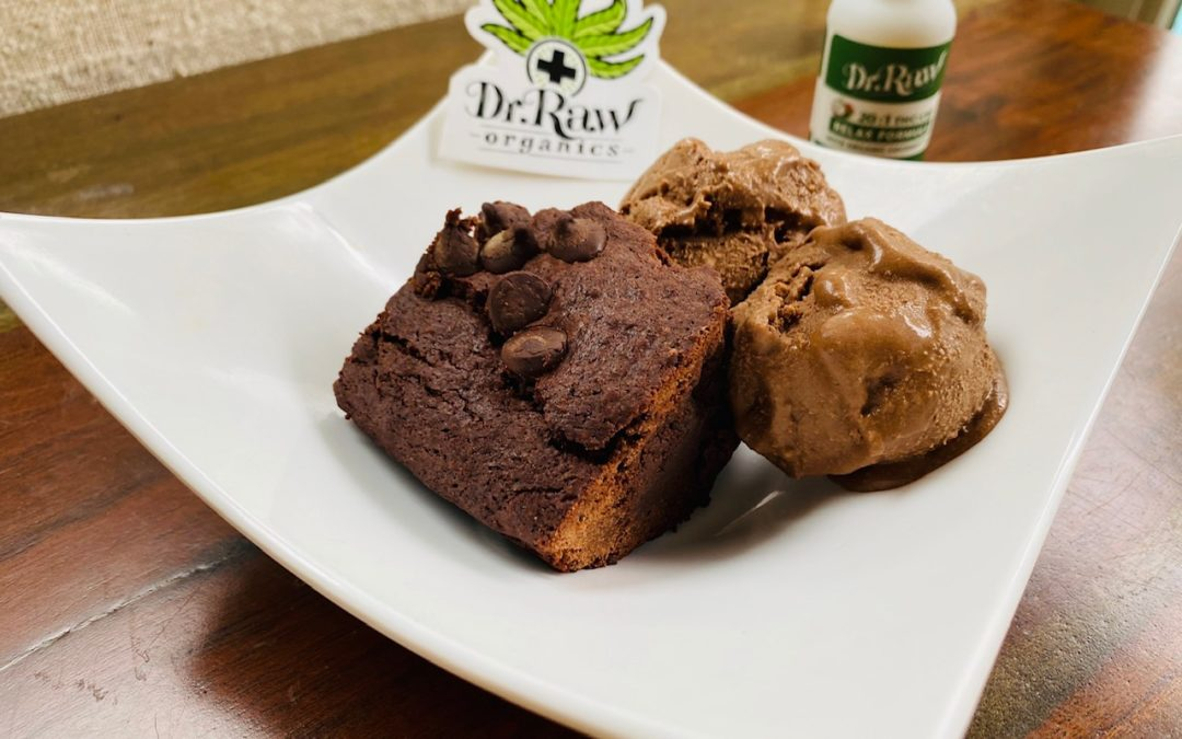Dr. Raw Cannabis Vegan GF Brownies